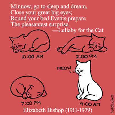 """Elizabeth Bishop, from """"Lullaby for the Cat"""""""