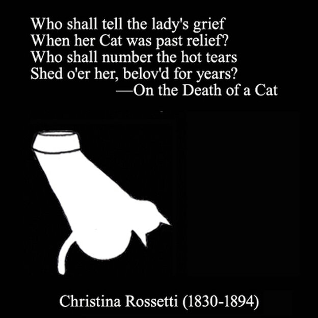 """Christina Rossettim from """"On The Death of a Cat"""""""
