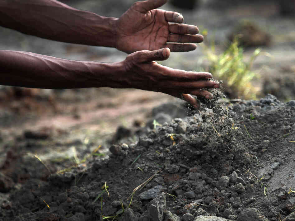 A man pours earth Wednesday onto a grave of one of the workers who died last week in the building collapse in Bangladesh.