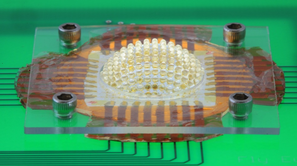 An insect's eye lets it see really well because each of its light-sensitive cells has a dedicated lens. This miniature camera, which mimics an insect eye, is made from an array of microlenses arranged on a stretchable sheet that can be inflated like a balloon to a hemispherical shape.
