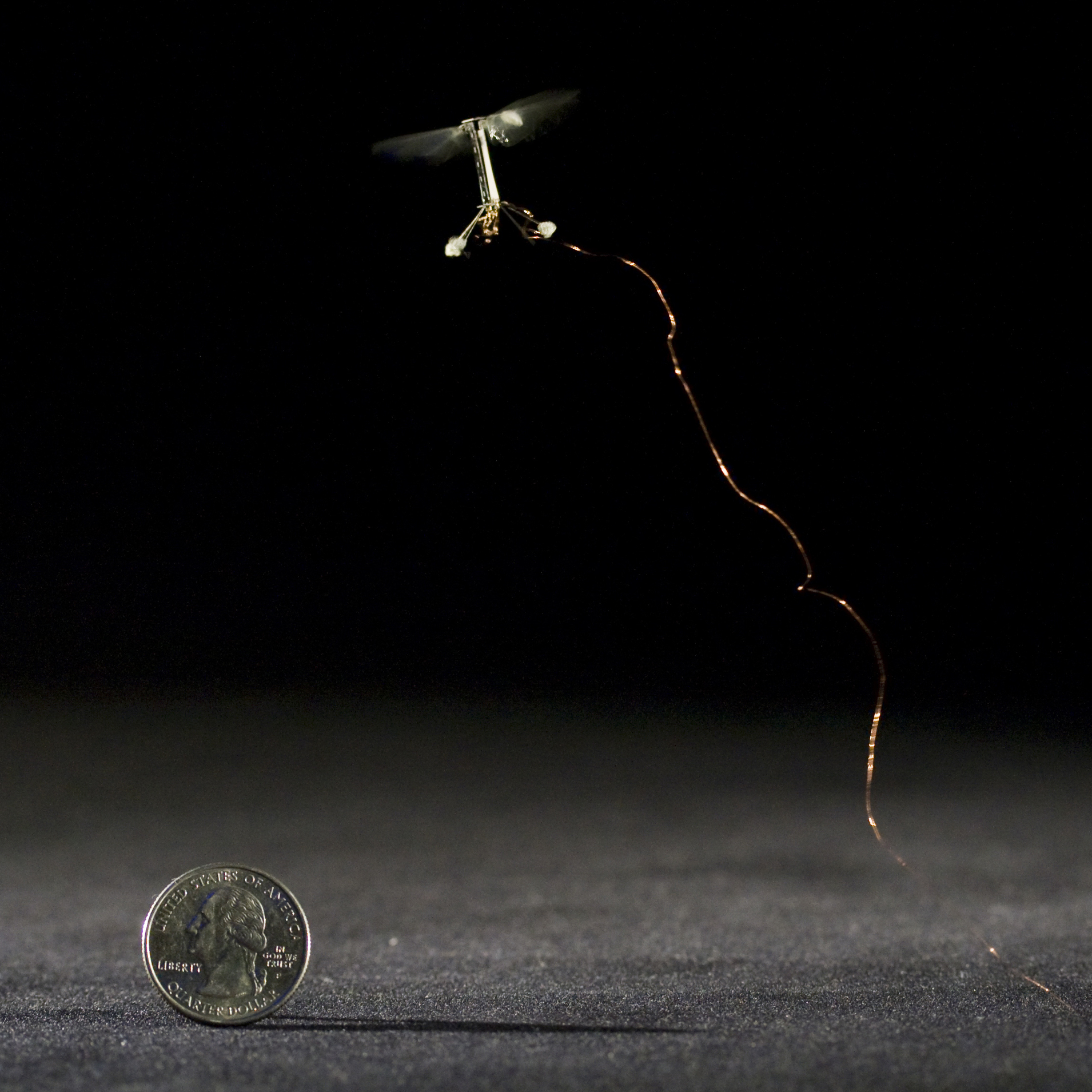 A robotic fly in controlled flight.