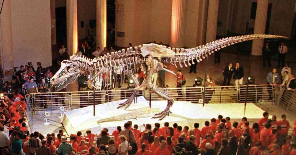 Chicago 39 S Famed Field Museum Struggles To Dig Out Of A
