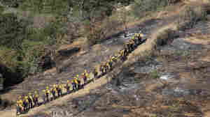 Elite U.S. Forest Service Hotshot firefighters walk the blackened edge of the Springs Fire near Camarillo, California. Citing favorable weather, officials say the fi
