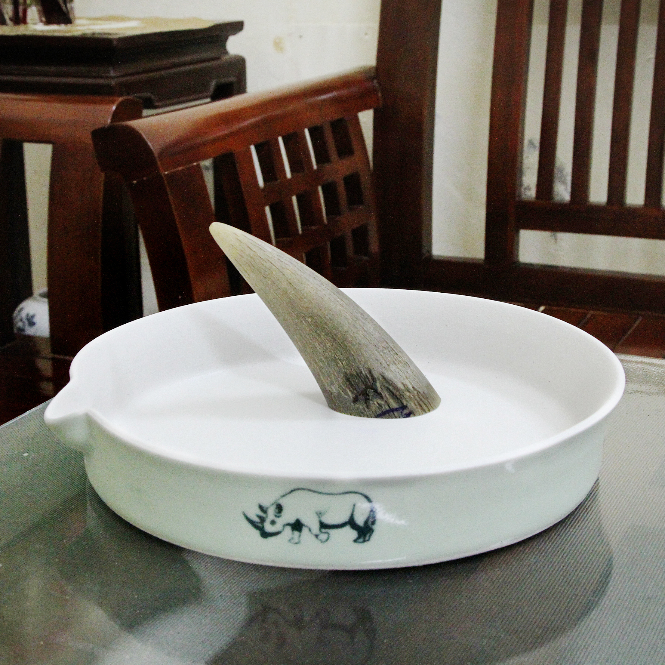 A rhino horn in a grinding bowl in a Hanoi home.