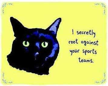 """A cat next to the words, """"I secretly root against your sports teams."""""""