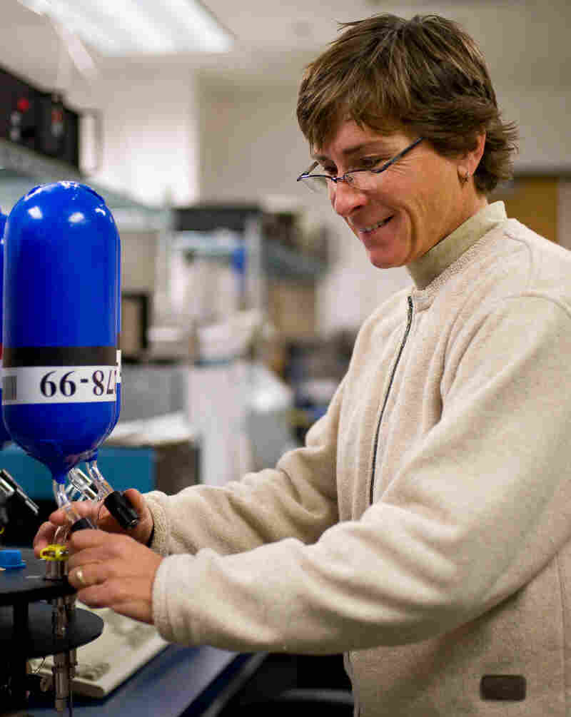 Pat Lang, of NOAA in Boulder, Colo., measures the amount of greenhouse gases from an air sample. The Boulder lab is part of a global network of air-sampling laboratories that track carbon dioxide levels in the atmosphere.