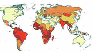 A map of cervical cancer rates around the world shows that they're highest in low-income countries.