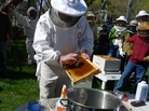 "Members of the Plymouth County Beekeepers Association in Plympton, Mass., watch an instructor demonstrate how to ""install"" their new bees once they get them home."