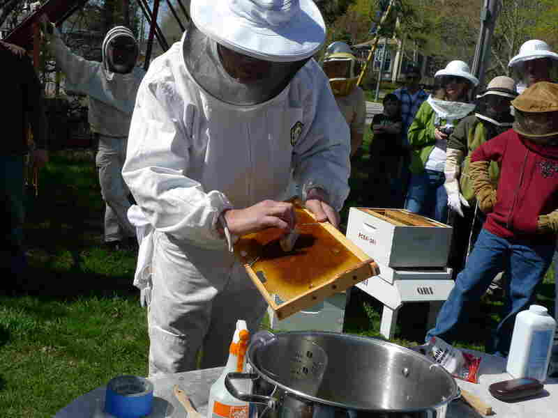"""Members of the Plymouth County Beekeepers Association in Plympton, Mass., watch an instructor demonstrate how to """"install"""" their new bees once they get them home."""
