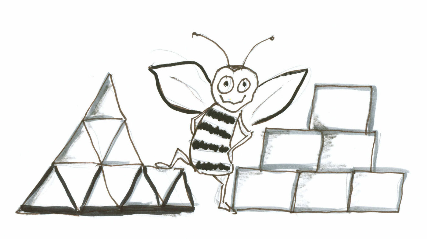 what is it about bees and hexagons krulwich wonders npr