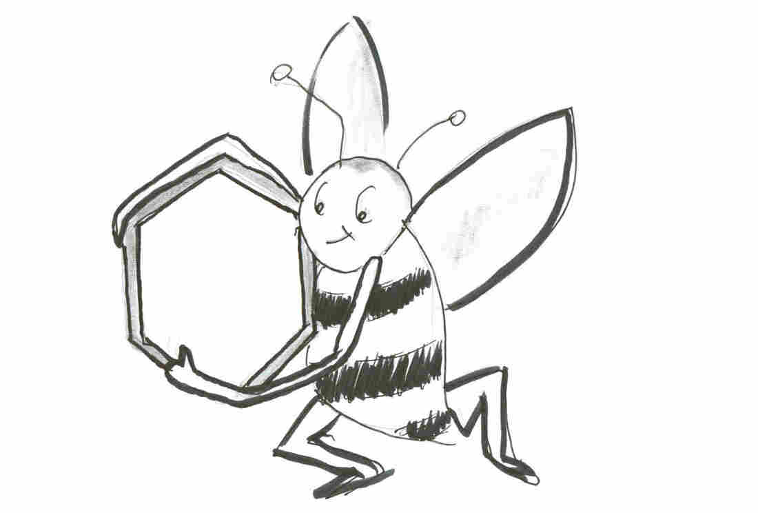 Bee with hexagon