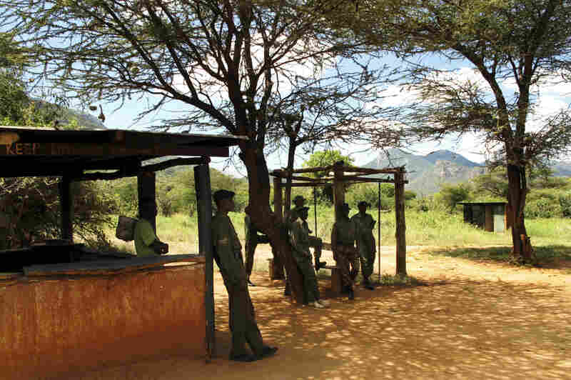Game rangers report for duty at a community conservancy in northern Kenya. The flourishing safari economy in Kenya generates more than $1 billion a year and nearly 500,000 jobs.