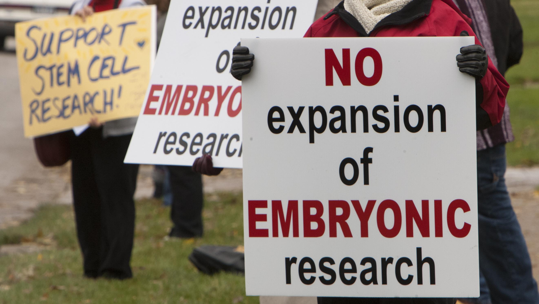 Cloning, Stem Cells Long Mired In Legislative Gridlock