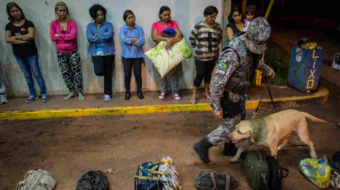 A drug-sniffing dog checks bags at a Brazilian border crossing with Bolivia on April 3. With an increase in illegal immigration and drug smuggling, Brazil is planning to build a virtual fence along its 10,000-mile border.