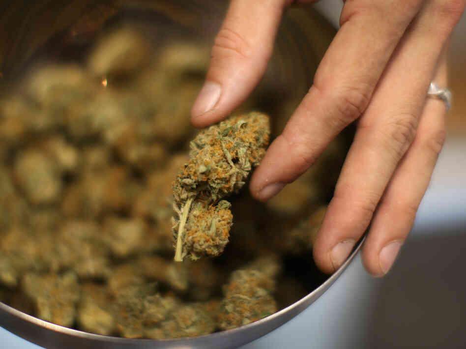 http://media.npr.org/assets/img/2013/05/22/calif-marijuana-a24b89b176a6ba38de2c8fe8da12d1953ac409b7-s6-c30.jpg