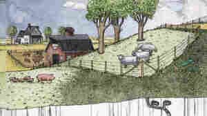 Arthur Geisert's 'Thunderstorm' Celebrates Life On The Prairie
