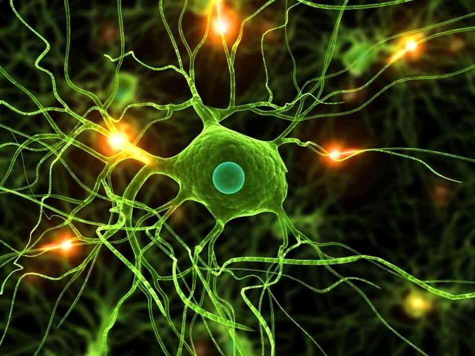 Genetic changes in signaling pathways in the brain may cause schizophrenia.
