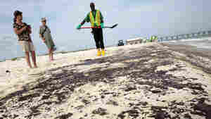 Tourists watch as workers clean oil from the sand along a strip of oil that washed up on the beach in Gulf Shores, Ala., in 2010 after the Deepwater Horizon oil rig exploded off the Louisiana coast.