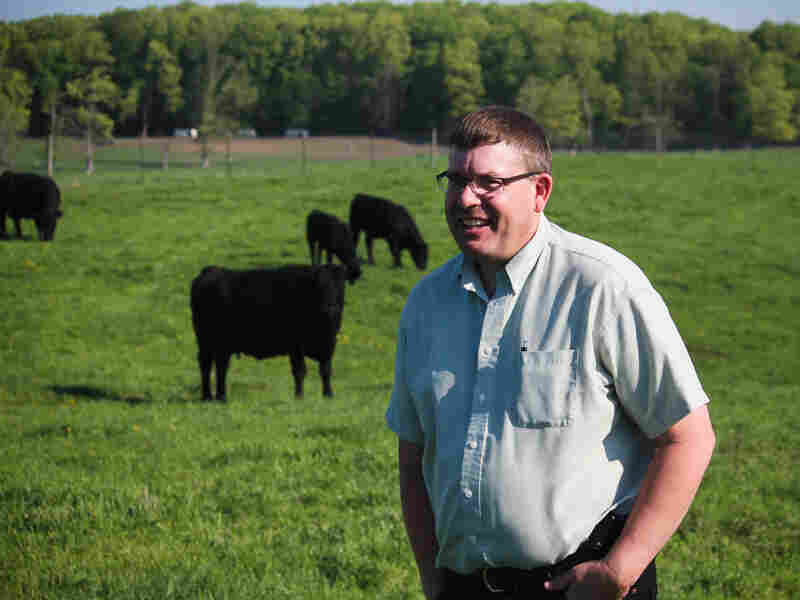 Daniel Buskirk, a professor of animal science at Michigan State University, is experimenting with the university's own cattle.
