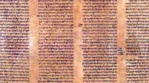 This sheepskin scroll found in the University of Bologna archives dates from 1155 to 1225, according to carbon testing.