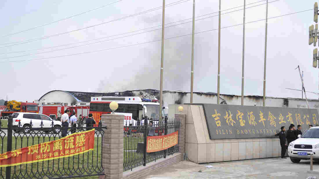 In this photo released by China's Xinhua News Agency, smoke rises from a poultry farm owned by Jilin Baoyuanfeng Poultry Company in Jilin province on Monday.