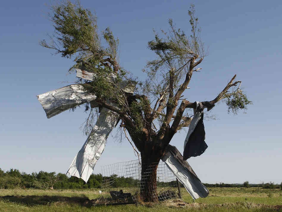 After the storm: Sheet metal that was torn off a building during Friday's tornado in El Reno, Okla., ended up caught in