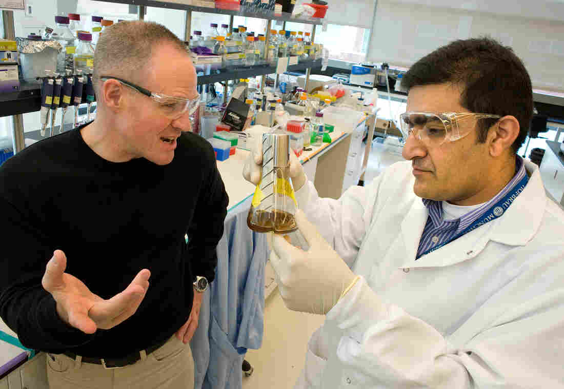 Jay Keasling (left), speaking with Rajit Sapar at the Joint BioEnergy Institute, is pioneering a technique to develop diesel fuel from yeast.