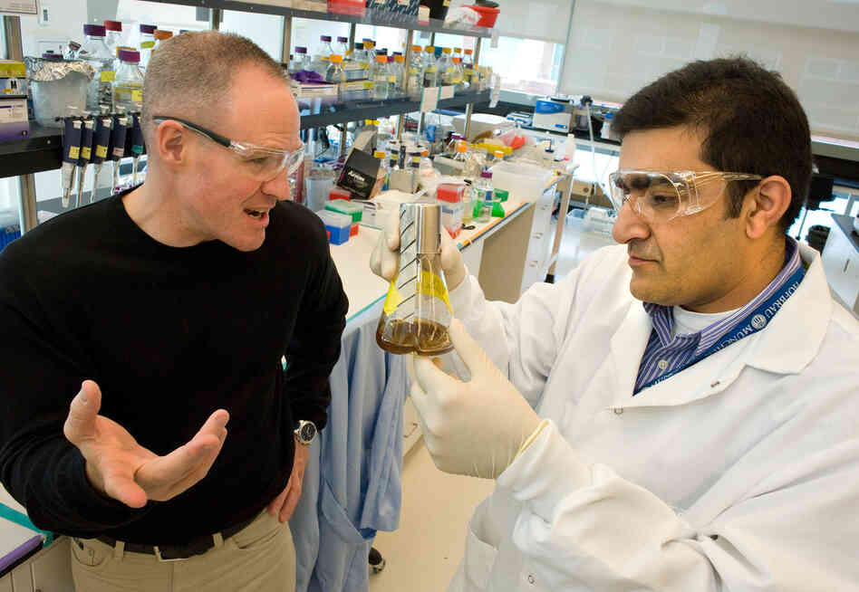 Jay Keasling (left), speaking with Rajit Sapar at the Joint BioEnergy Institute, is pioneering a technique to develop diesel fuel from ye