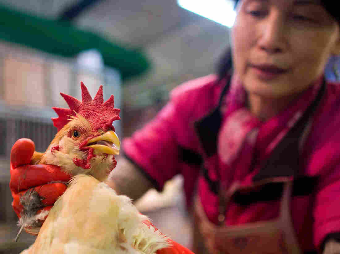 A vendor weighs a live chicken at the Kowloon City Market in Hong Kong last April. After
