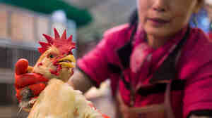 A vendor weighs a live chicken at the Kowloon City Market in Hong Kong last April. After closing live poultry shops in many cities around China, the rate of new H7N9 infections sharply declined.
