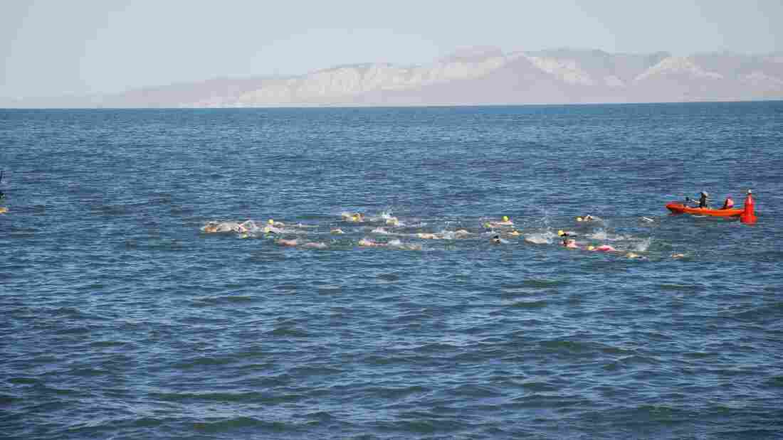 Swimmers begin a 1-mile race in the Great Salt Lake in June 2012. The mountains of Stansbury Island rise in the background.