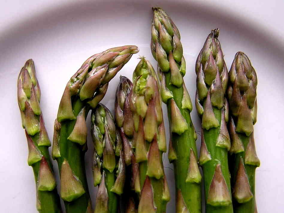 In a recent study, rats that munched on asparagus saw their blood pressure dro