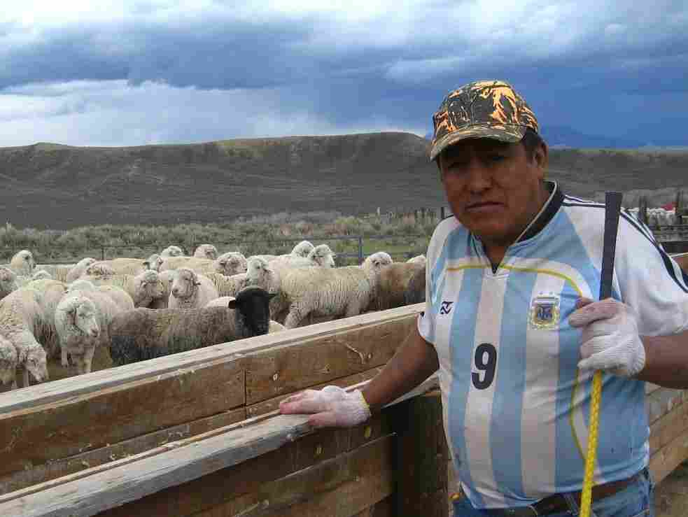 Antonio Basualdo Solorzano has worked at the Ladder Ranch in south-central Wyoming for eight years. On his wages as a guest worker, he's supported seven children back home in Peru.