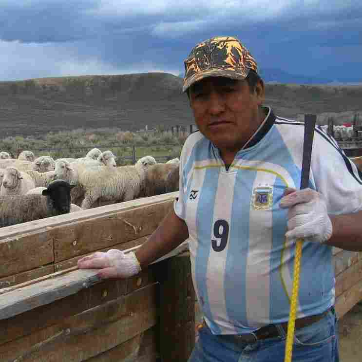 Immigration Bill May Keep Wage Exemption For Foreign Herders