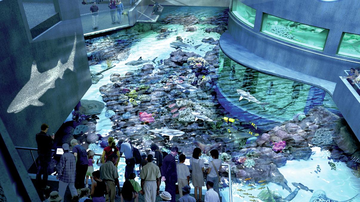 Aquarium Sculptors Create Coral For Conservation Awareness