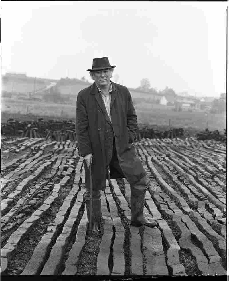 Seamus Heaney, an Irish poet and playwright.