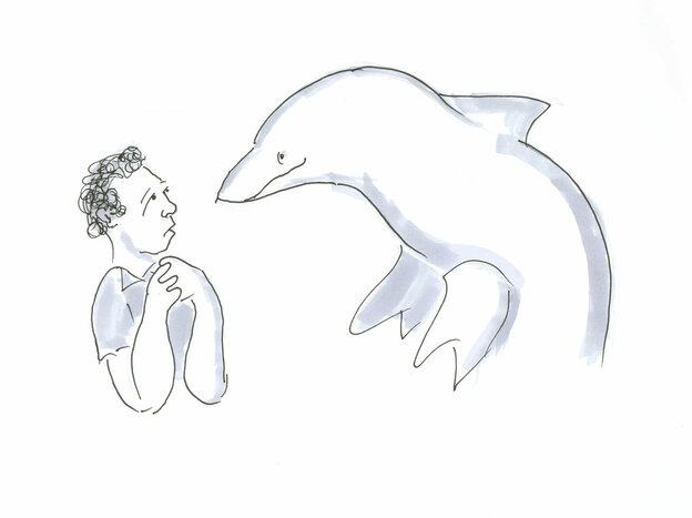 Man staring at Dolphin drawing.