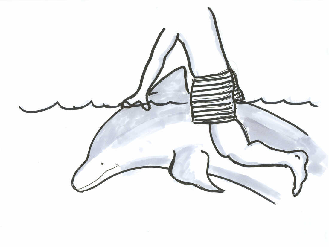 person riding dolphin drawing