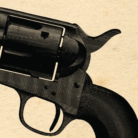 American Gun cover