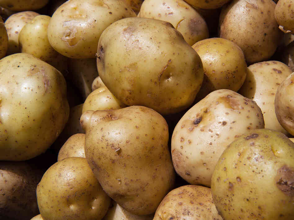 Fresh white spuds aren't allowed in a government supplemental nutrition program for women and children because, unlike other fruits and vegetables, potatoes aren't lacking in the typical diet.