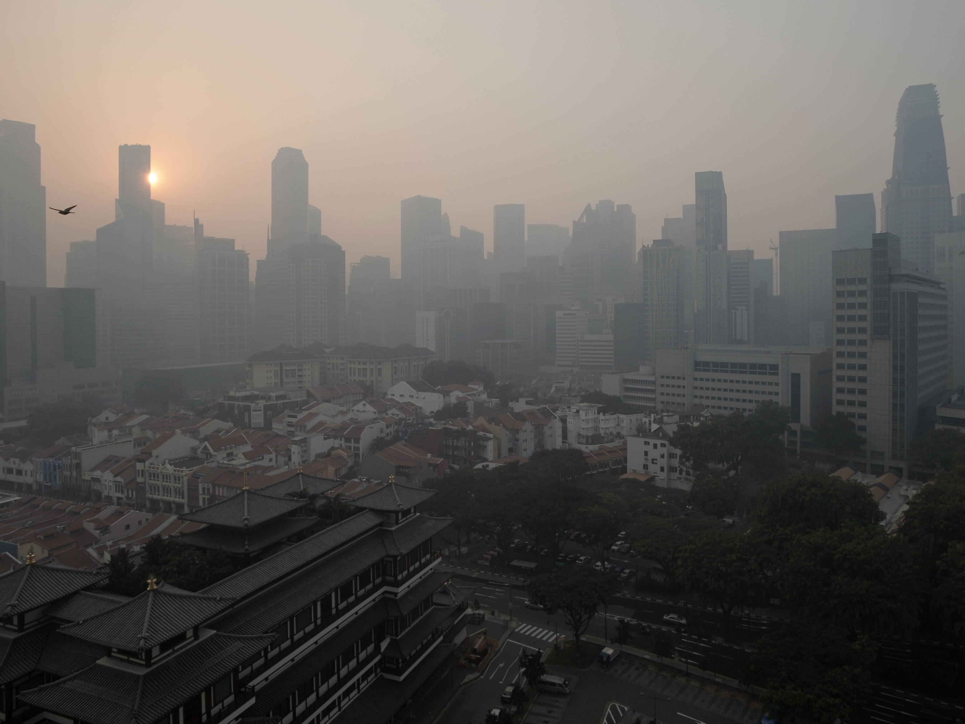 singapore endures record smog ncpr news