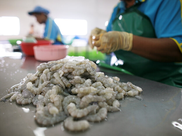 Workers process shrimp at a factory in Thailand in 2009.