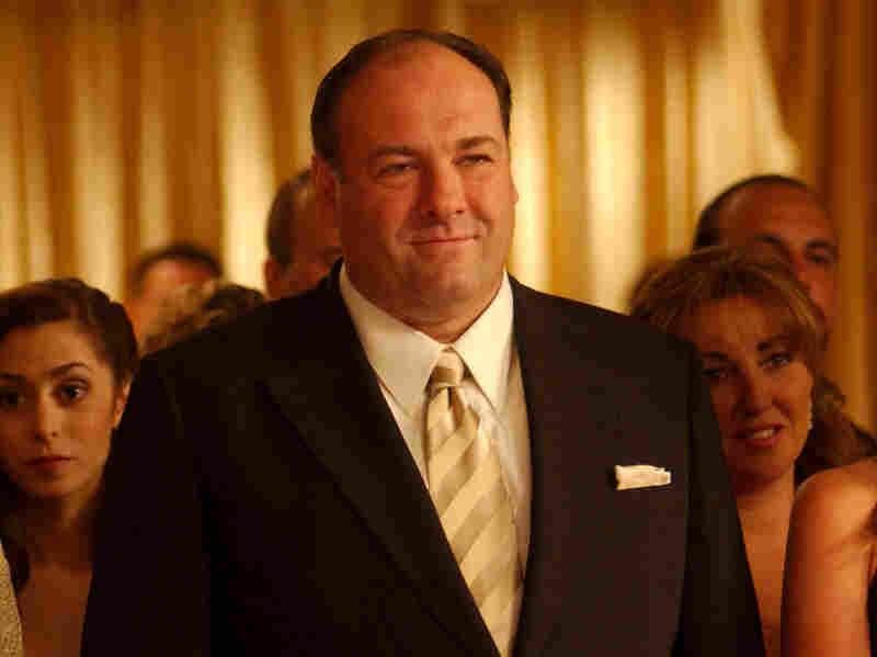 James Gandolfini played Tony Soprano in the hit TV series The Sopranos. Gandolfini died of cardiac arrest in Italy this week at age 51.
