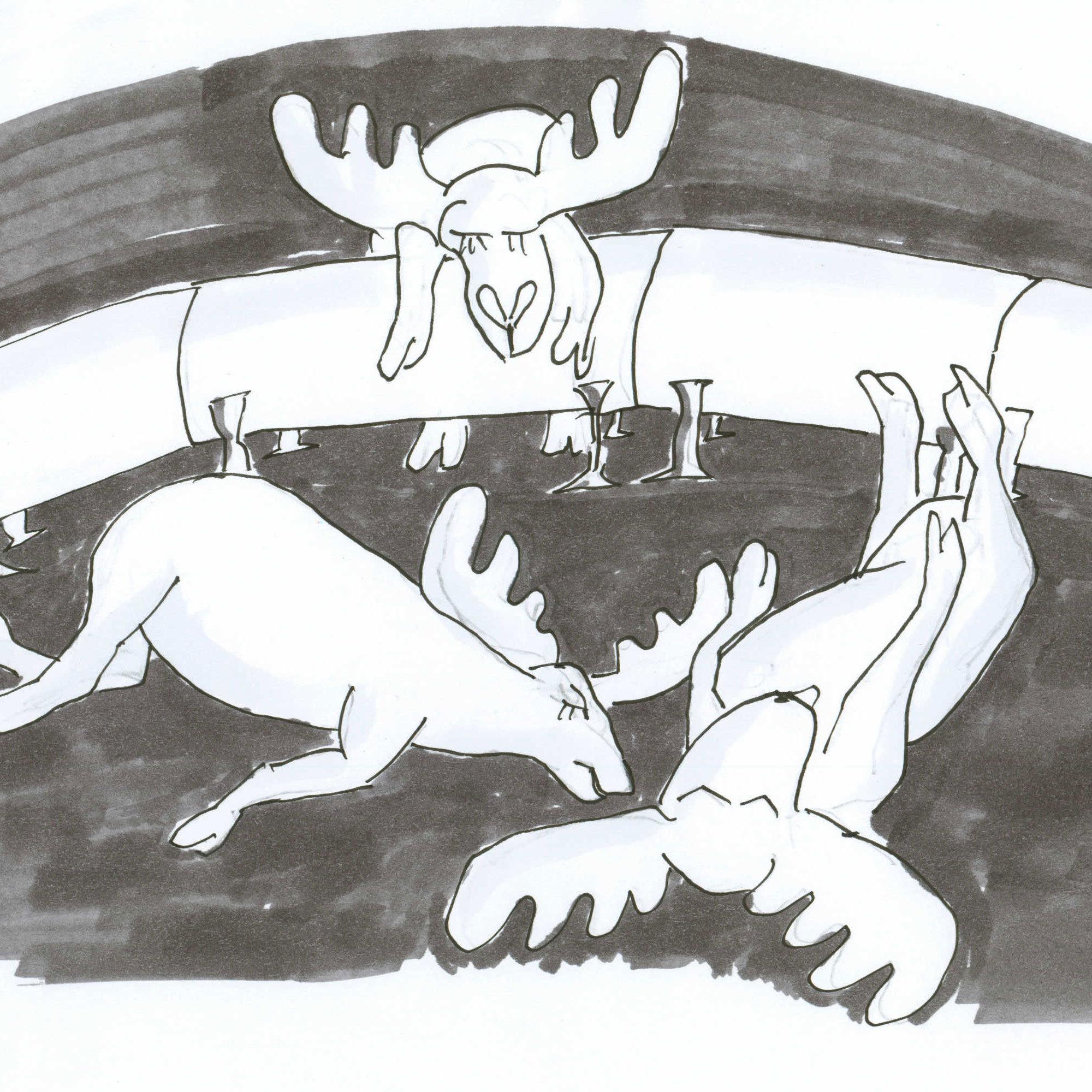 Dead caribou.