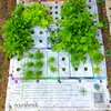 The Nourishmat, which is inspired by Square Foot Gardening, makes it easy to grow 15 to 20 pounds of food in a small space w
