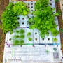 The Nourishmat, which is inspired by Square Foot Gardening, makes it easy to grow 15 to 20 pounds of food in a small space with a plastic mat that serves as a garden planting guide.