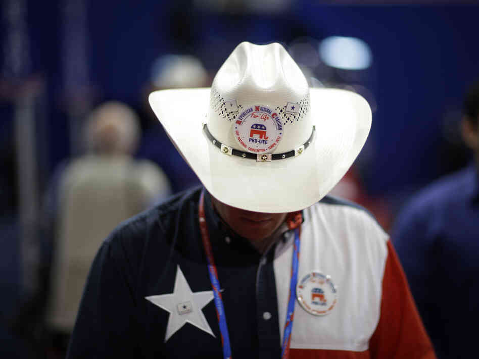 A Texas delegate on the floor of the Republican National Convention in 2012.