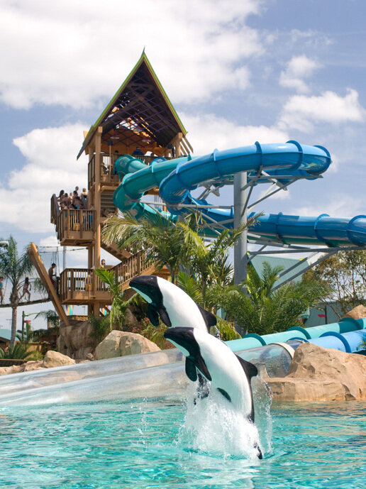 The Wackiest Water Slides In America : The Protojournalist : NPR