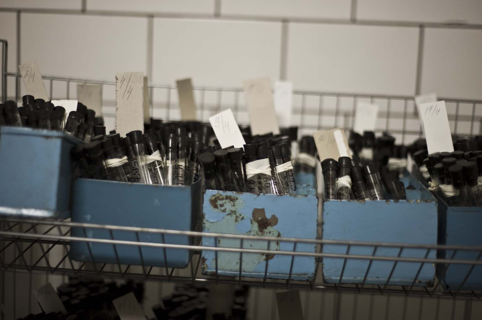 Medical samples stack up in the microbiology lab at the prison.