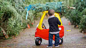 Pedal Power To Horsepower: Toys Point Toward Future Of Cars